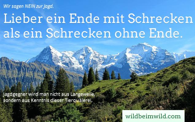 Jagd Graubünden